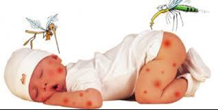 Một số cách chống muỗi cho trẻ sơ sinh.